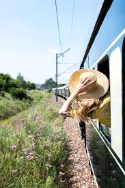sle resume journalist position in kzn education bursary 2017 rovos rail blog luxury train travel blog rovos