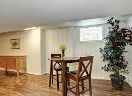 better your basement with plants basement design 10 fast fixes