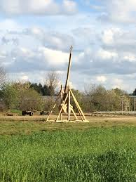 that glorious moment when your best buddy builds a trebuchet in
