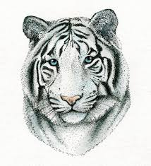 white tiger colored drawing made of dots unique art platform