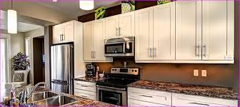 replacement kitchen cabinet doors and drawers replacing kitchen cabinet doors and drawer fronts home decor