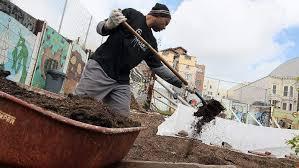 everything you need to start an organic urban garden heavy com