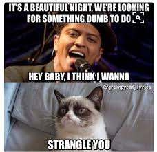Internet Meme Song - 49 best funny grumpy cat song lyrics images on pinterest funny