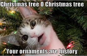 Top Ten Funny Memes - top 10 funny christmas memes compilation 2016 listingdock