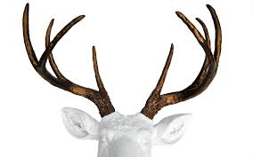 home design deer head wall decoration manufacturers throughout