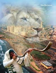 shofar from israel 53 best hashofar images on trumpets holy land and