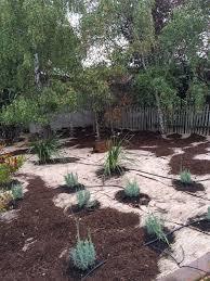 sheet mulch 101 fiddlehead gardens