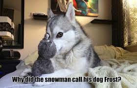 Do You Want To Build A Snowman Meme - do you want to build a snowman album on imgur