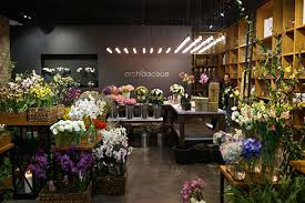 flower shops in orchidaceae flower shop 2 48am everything kuwait