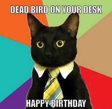 Day After Birthday Meme - 25 best happy birthday meme images for sister sis birthday hd