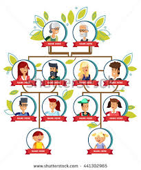 family tree generation illustratuion faces stock vector