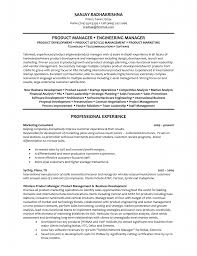 Project Manager Resume Objective Product Manager Resume Objective Project Skills For Software
