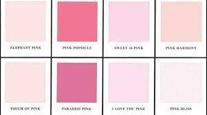 pink benjamin moore paint colors alanas design homes alternative