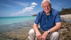 sir david attenborough and now for something completely different