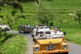 classic jeep convertible discovery tour in a vw convertible jeep west of bali around ubud