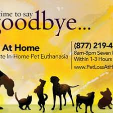 pet euthanasia at home pet loss at home home euthanasia vets veterinarians