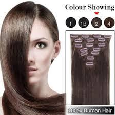 Cheap Human Hair Extensions Clip In Full Head by Clip In On Hair Extension Xuchang Beautyhair Fashion Co Ltd