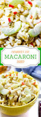 Creamy Pasta Salad Recipes by Creamy Cucumber And Egg Macaroni Salad
