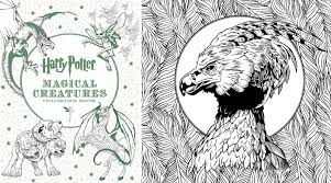 harry potter magical creatures colouring book garden square