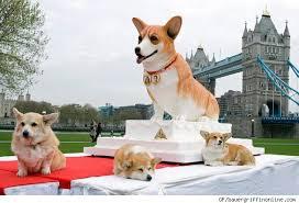 Queen Corgis Queens Corgis U0026 Cake Oh My Dogsplendor