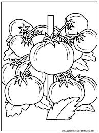 legumes 52 coloriage à colorier les coloriages et dessin à