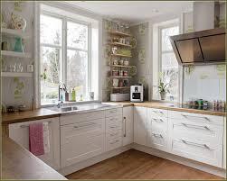 Kitchen Cabinet Displays by Kitchen Cabinet Dynamic Ikea Cabinets Kitchen Ikea Cabinets