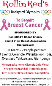 town of old lyme ct saturday backyard olympics benefit at