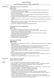 sle resume templates accountants compilation report income financial reporting resume sles velvet jobs