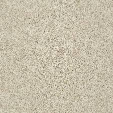 Home Decorators Carpet Home Decorators Collection Star City Color Cream Dream Twist 12