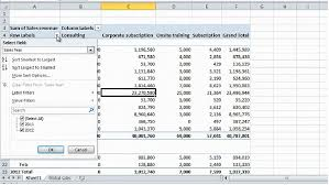 how to sort a pivot table how to filter and sort a pivottable in microsoft excel 2010