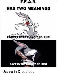 Meme Face Meanings - fear has two meanings vr and run face everything and rise run meme