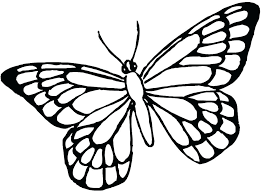 coloring page butterfly monarch coloring page of butterfly monarch butterfly coloring pages