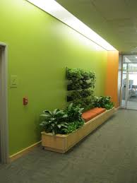 fancy green walls and interior planting decoration with orange