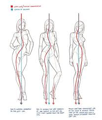 artist simply simple female anatomy reference for artists at best