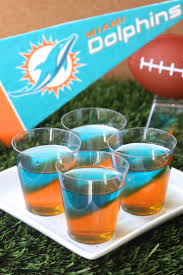 214 best dolphin time images on pinterest miami dolphins