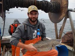 the contrasting fortunes of atlantic cod in warming oceans