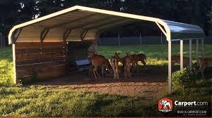 two car carport plans beautiful double car carport 4 metal shelter 47922051 jpg