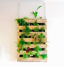 wall mounted herb garden livingroom vertical garden hanging wall planters wall mounted