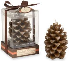 The Knot Favors by Fall Wedding Favor Idea Falling For You Scented Pine Cone