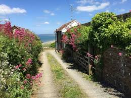 Holiday Cottages In Bideford by Character Cottage Old Saltys Cottage In Westward Ho 1932722