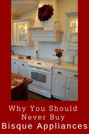 what color appliances look best with cabinets never buy bisque appliances exquisitely unremarkable