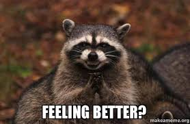 Feel Better Meme - feeling better evil plotting raccoon make a meme