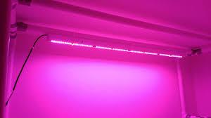 philips led grow light led lights philips greenpower vs a cheaper chinese alternative