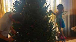 tom brady and decorating a tree will