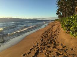 Hawaii leisure travel images Free images beach landscape sea coast nature path outdoor