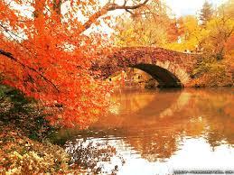 autumn in new york wallpapers 2 seasonal crazy frankenstein