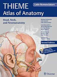 Netter Atlas Of Human Anatomy Pdf Download Best 25 Atlas Anatomy Ideas On Pinterest Skeleton Anatomy