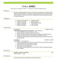 Resume Examples For It Jobs by Best Tax Preparer Resume Example Livecareer