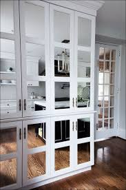 Glass Front Kitchen Cabinet Door Kitchen Custom Mirrored Cabinet Doors Diy Medicine Cabinet Ideas