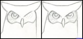 how to draw a great horned owl step by step birds animals free